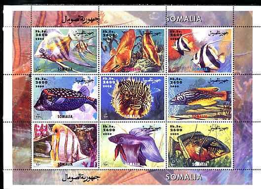 Somalia 2000 Exotic Fish #2 perf sheetlet containing set of 9 values unmounted mint. Note this item is privately produced and is offered purely on its thematic appeal