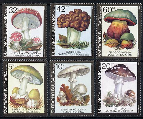 Bulgaria 1991 Fungi complete set of 6 unmounted mint, SG 3746-51 (Mi 3886-91)
