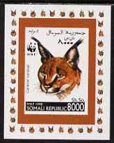 Somalia 1998 WWF - Caracal Lynx 8000sh imperf individual de-luxe sheetlet, unmounted mint. Note this item is privately produced and is offered purely on its thematic appeal