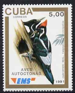 Cuba 1991 Express Mail Stamp - 5p Ivory-Billed Woodpecker unmounted mint SG E3642