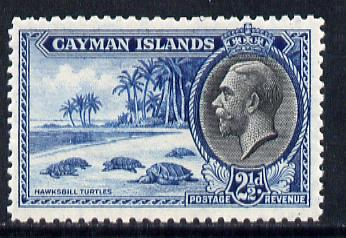 Cayman Islands 1935 Hawksbill Turtles KG5 2.5d unmounted mint SG 101
