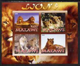 Malawi 2008 Lions imperf sheetlet containing 4 values unmounted mint, stamps on cats, stamps on lions