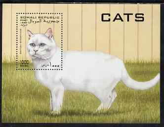 Somalia 1997 Domestic Cats perf m/sheet unmounted mint. Note this item is privately produced and is offered purely on its thematic appeal