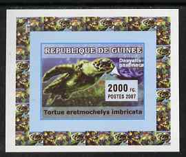 Guinea - Conakry 2007 Turtles & Fish individual imperf deluxe sheet #1, unmounted mint. Note this item is privately produced and is offered purely on its thematic appeal as Yv 522