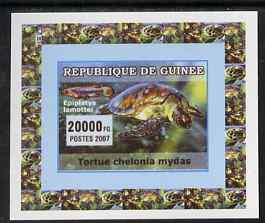 Guinea - Conakry 2007 Turtles & Fish individual imperf deluxe sheet #3, unmounted mint. Note this item is privately produced and is offered purely on its thematic appeal as Yv 524