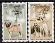Cuba 2006 Chinese New Year - Year of the Dog perf set of 2 unmounted mint SG 4914-5, stamps on dogs, stamps on lunar, stamps on lunar new year