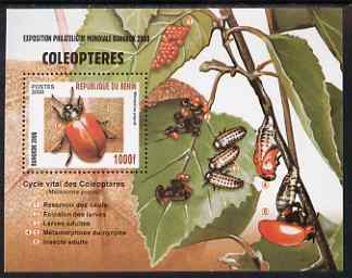 Benin 2000 Insects (Bangkok 2000 Stamp Exhibition) perf m/sheet unmounted mint