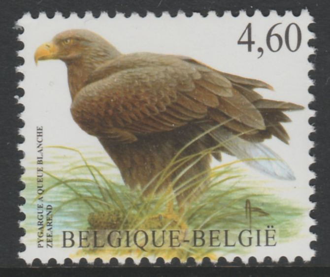 Belgium 2002-09 Birds #5 White-Tailed Eagle 4.60 Euro unmounted mint SG3708c, stamps on birds, stamps on birds of prey, stamps on eagles