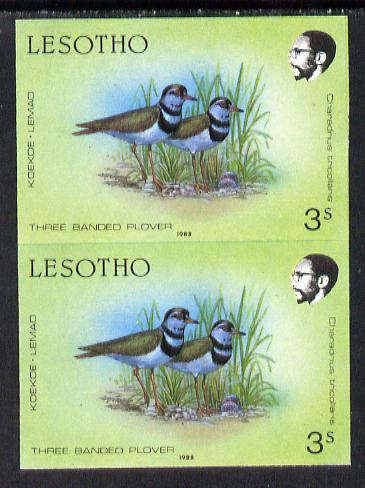 Lesotho 1988 Birds 3s Plover unmounted mint imperf pair (as SG 792)*