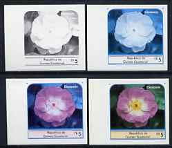 Equatorial Guinea 1976 Roses EK5 (Escapade) set of 4 imperf progressive proofs on ungummed paper comprising 1, 2, 3 and all 4 colours (as Mi 974)