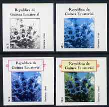 Equatorial Guinea 1977 Flowers EK8 (Gentiana clusii) set of 4 imperf progressive proofs on ungummed paper comprising 1, 2, 3 and all 4 colours (as Mi 1216)