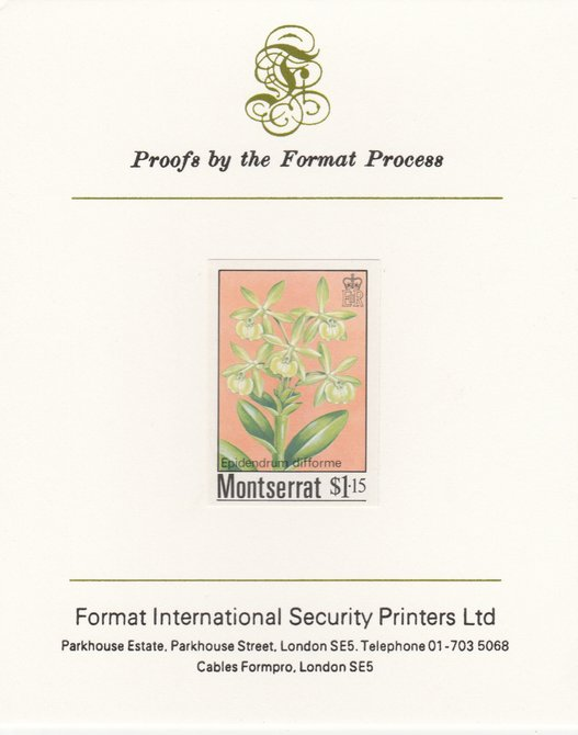 Montserrat 1985 Orchids $1.15 (Eppidendrum difforme) imperf proof mounted on Format International proof card, as SG 632