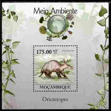 Mozambique 2010 The Environment - Aardvarks perf souvenir sheet unmounted mint Michel BL 306, stamps on animals, stamps on aardvarks, stamps on environment, stamps on