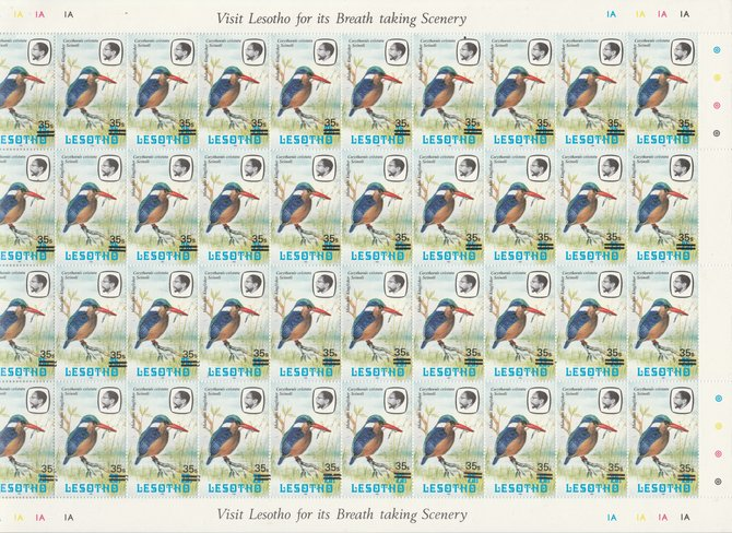 Lesotho 1986-88 Provisional surcharge 35s on 25s Malachite Kingfisher, the complete sheet of 40 with the scarce 1981 imprint date (SG720b) and containing 11 examples of the small \D5s\D5 variety found in positions 1/5, 1/6, 1/8, 1/9, 2/6, 2/7, 2/8, 3/5,4/4, 4/6, and 4/8. The total catalogue value is thus 11 x \A3100 plus 29 x \A350 = \A32,550 and offered here at less than 16% of cat value