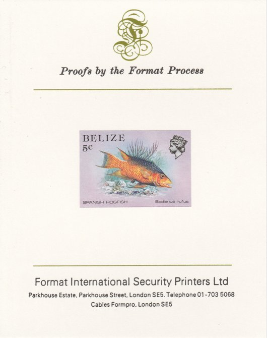 Belize 1984-88 Hogfish 5c def imperf proof mounted on Format International proof card as SG 770