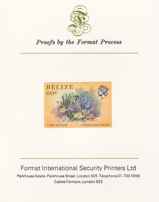 Belize 1984-88 Tube Sponge 60c def imperf proof mounted on Format International proof card as SG 776, stamps on marine-life