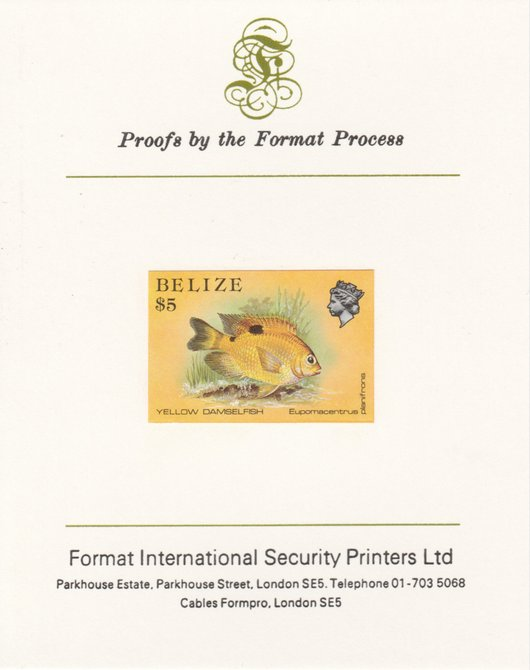 Belize 1984-88 Damselfish $5 def imperf proof mounted on Format International proof card as SG 780