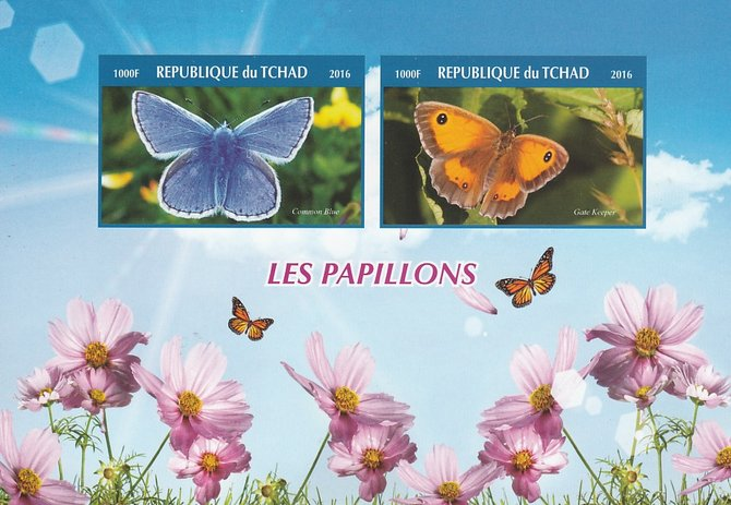 Chad 2016 Butterflies #1 imperf sheetlet containing 2 values unmounted mint. Note this item is privately produced and is offered purely on its thematic appeal. .
