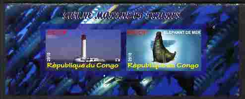 Congo 2010 Lighthouses & Marine Fauna #4 imperf sheetlet containing 2 values unmounted mint
