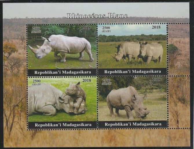 Madagascar 2018 Rhinos perf sheetlet containing 4 values unmounted mint. Note this item is privately produced and is offered purely on its thematic appeal.