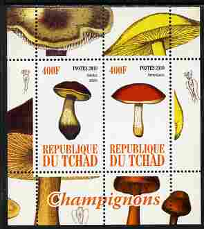 Chad 2010 Mushrooms #1 perf sheetlet containing 2 values unmounted mint