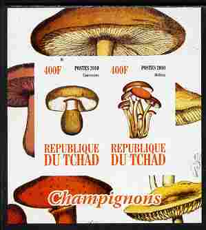 Chad 2010 Mushrooms #2 imperf sheetlet containing 2 values unmounted mint