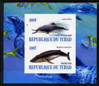 Chad 2010 Whales & Dolphins imperf sheetlet containing 2 values unmounted mint