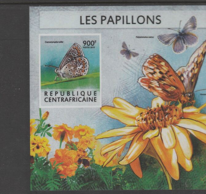 Central African Republic 2015 Butterflies #7 imperf s/sheet unmounted mint. Note this item is privately produced and is offered purely on its thematic appeal