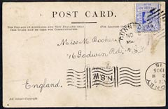 New South Wales 1905 picture postcard (Bullock Team) to UK bearing 2d tied Dunnedar cds, fine