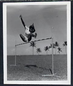 Fiji 1951 High Jump B&W photograph (2 x 2.5 in) as sumitted by the government as suggestion for a new stamp issue, with official h/stamp on reverse