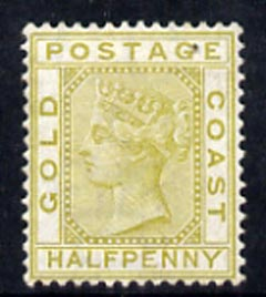 Gold Coast 1876-84 QV 1/2d olive-yellow very fine mounted mint SG4