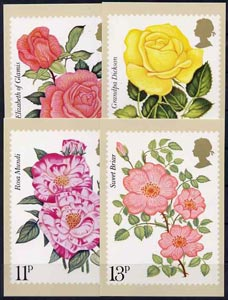 Great Britain 1976 Centenary of Royal National Rose Society set of 4 PHQ cards unused and pristine cat \A328