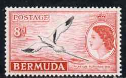 Bermuda 1953-62 White-tailed Tropic Bird 8d unmounted mint, SG 143a