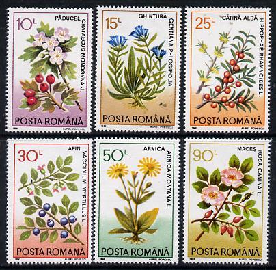 Rumania 1993 Medicinal Plants set of 6 unmounted mint, SG 5501-06, Mi 4866-71*