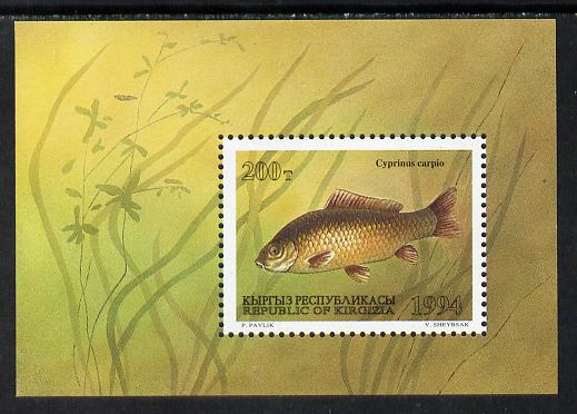 Kyrgyzstan 1994 Fish m/sheet (Carp) unmounted mint