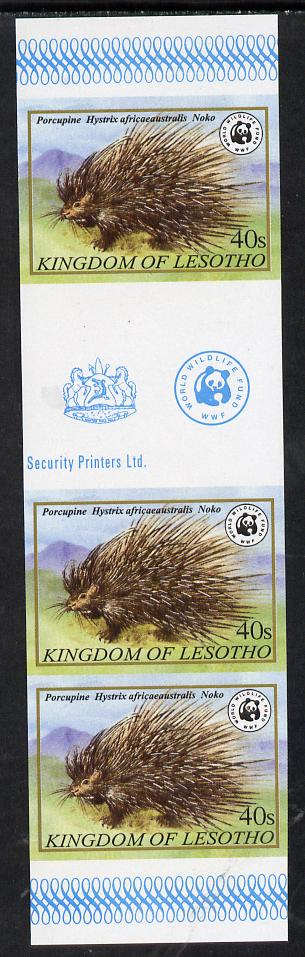 Lesotho 1981 WWF - Cape Porcupine 40s imperf gutter strip of 3 unmounted mint, only about 20 strips believed to exist, SG 471