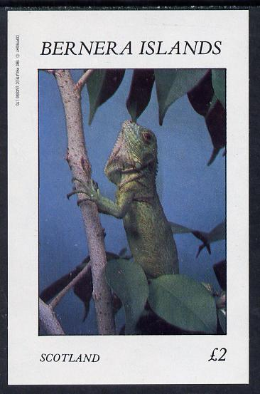 Bernera 1982 Lizards imperf deluxe sheet (�2 value) unmounted mint, stamps on animals   reptiles