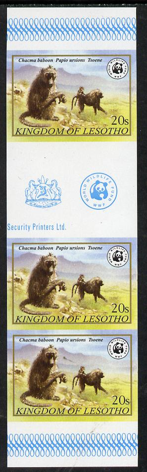 Lesotho 1981 WWF - Chacma Baboon 20s imperf gutter strip of 3 unmounted mint, only about 20 strips believed to exist, SG 472