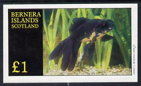 Bernera 1982 Ornamental Fish imperf souvenir sheet (�1 value) unmounted mint