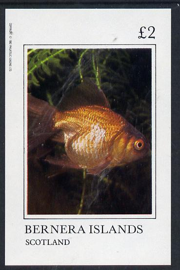 Bernera 1982 Ornamental Fish imperf deluxe sheet (�2 value) unmounted mint, stamps on fish     marine-life