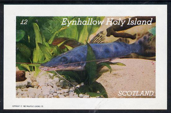 Eynhallow 1982 Tropical Fish imperf deluxe sheet (�2 value) unmounted mint