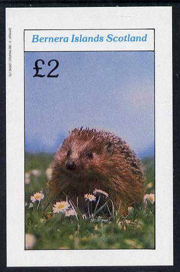 Bernera 1982 Animals (Hedgehog) imperf deluxe sheet (�2 value) unmounted mint