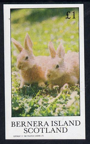 Bernera 1982 Rabbits imperf souvenir sheet (�1 value) unmounted mint