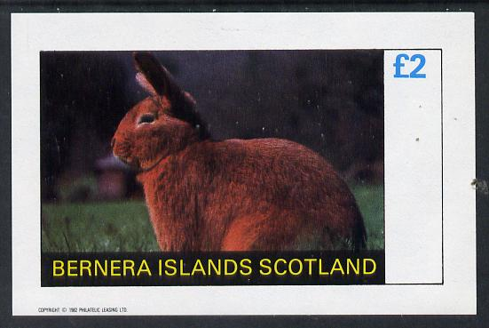 Bernera 1982 Rabbits imperf deluxe sheet (�2 value) unmounted mint