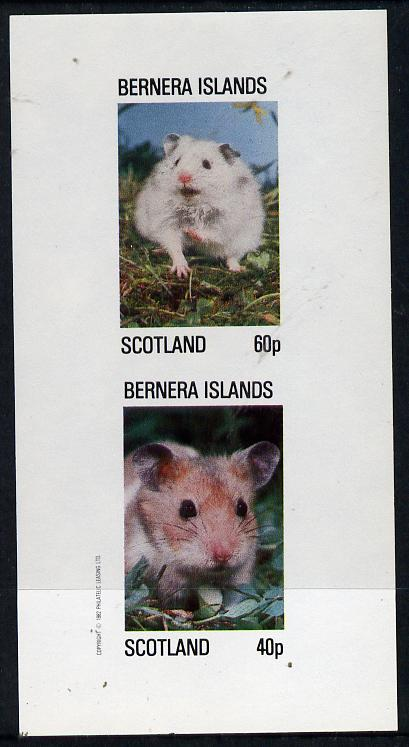Bernera 1982 Rodents #1 imperf  set of 2 values (40p & 60p) unmounted mint