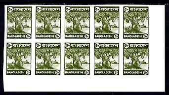 Bangladesh 1976 Jack Fruit 5p unmounted mint IMPERF corner block of 10, SG64a