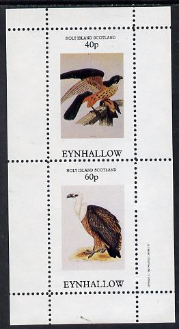 Eynhallow 1982 Birds of Prey #03 perf  set of 2 values (40p & 60p) unmounted mint, stamps on birds, stamps on birds of prey