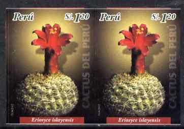 Peru 2004 Cacti 1s20 Eriosyce islayensis imperf pair unmounted mint as SG2202
