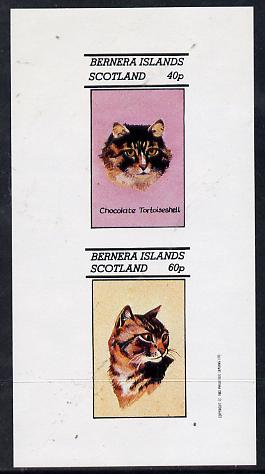 Bernera 1982 Cats (Tortoiseshell etc) imperf  set of 2 values (40p & 60p) unmounted mint