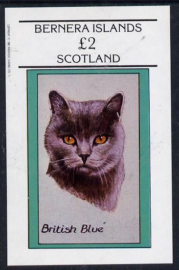 Bernera 1982 Cats (British Blue) imperf deluxe sheet (�2 value) unmounted mint